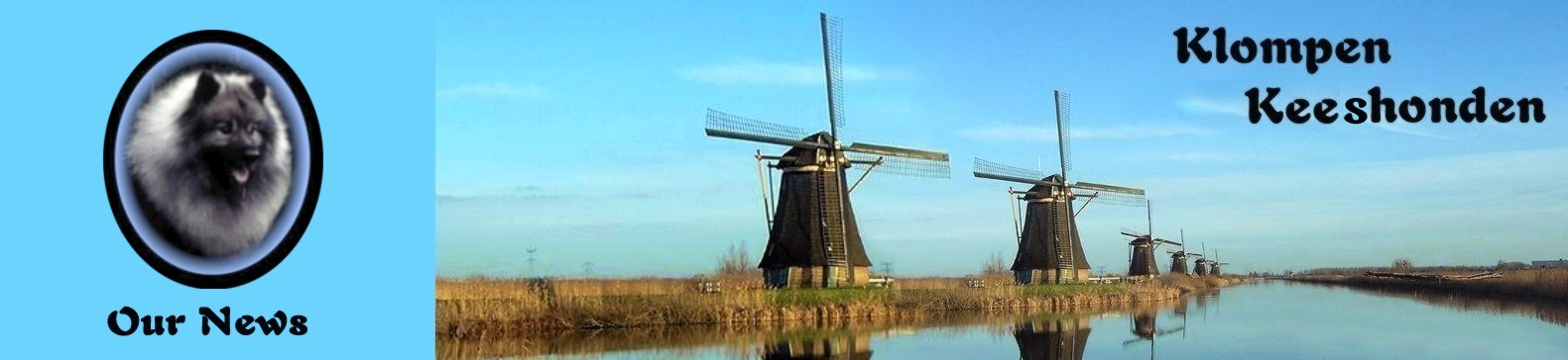 row of windmills found in Kinderdijk, Holland